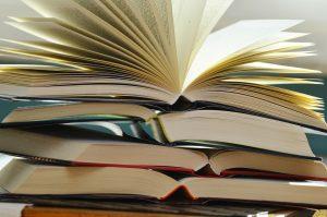 Desaparece Libro visitas papel